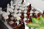 チェスa0002_009346